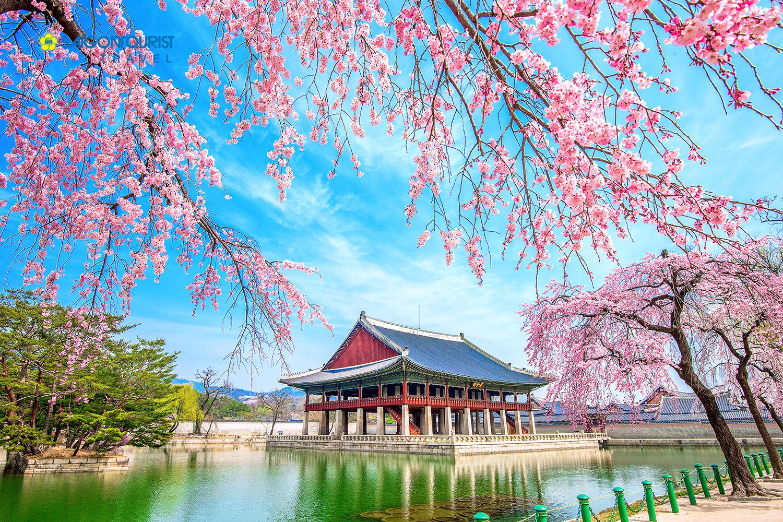 Điểm danh những địa chỉ phải đến khi du lịch Hàn Quốc